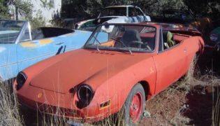 Fiat 850 Spider abbandonate.