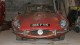 Jaguar E-Type abbandonata
