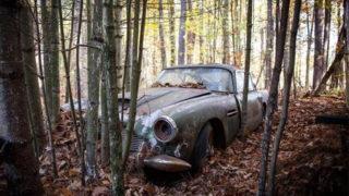 Una Aston Martin DB4 abbandonata nel bosco per quasi 50 anni.